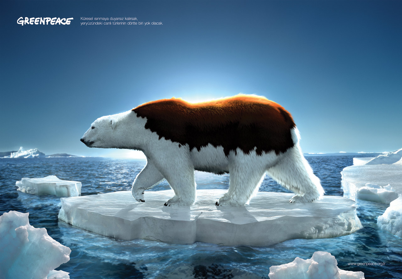 Global Warming Polar Bears